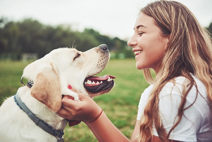Frame with a beautiful girl with a beautiful dog in a park on green grass. Dogs' mouths are cleaner than humans': urban myth, or is there some truth there? Either way, we've all likely heard the statement before, and promptly pictured our furry friend licking themselves or eating dirt.